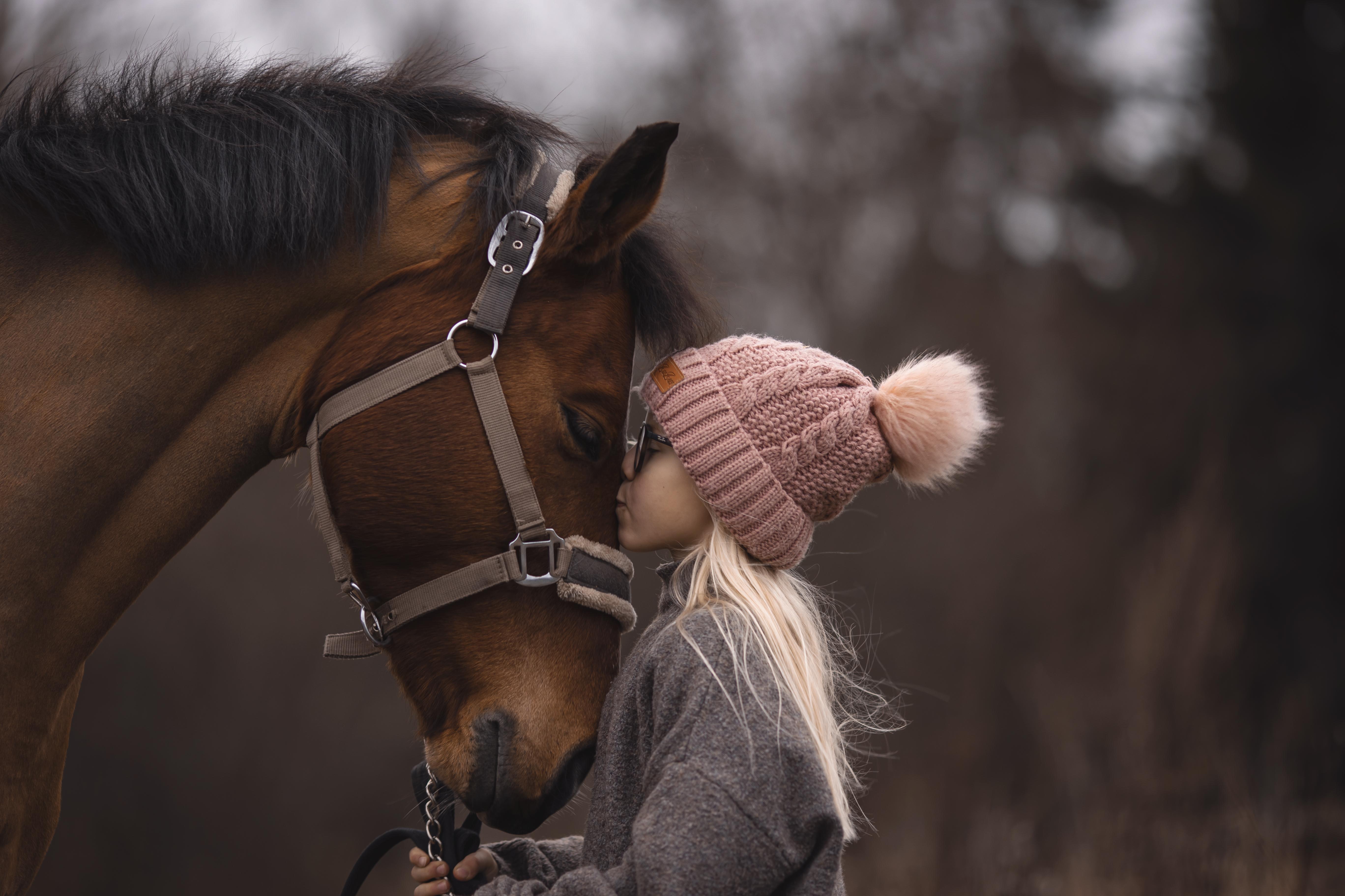 häst1